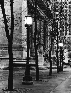 New York Public Library #20001